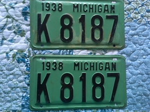 Picture of 1938 Michigan Pair #K8187
