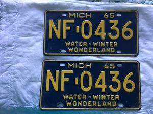 Picture of 1965 Michigan Pair #NE-0436