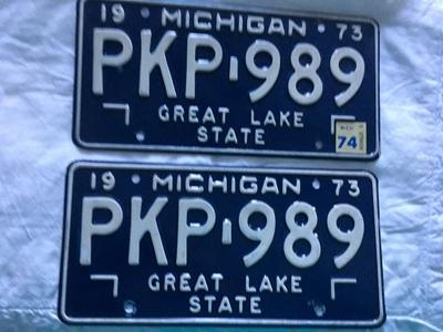 Picture of 1973 Michigan Pair #PKP-989