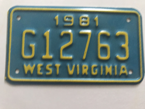Picture of 1981 West Virginia #G12763